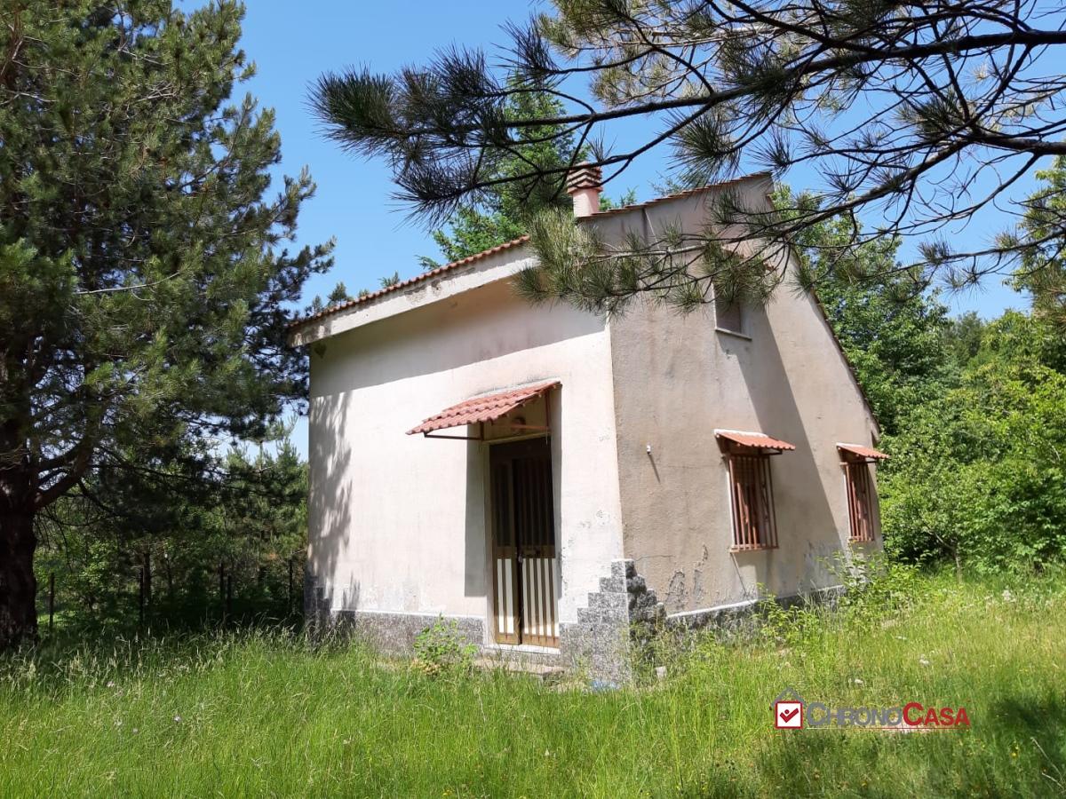 Villa singola Santo Stefano in Aspromonte RC1049561